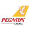 Pegasus Airlines (Pegasus Plus)
